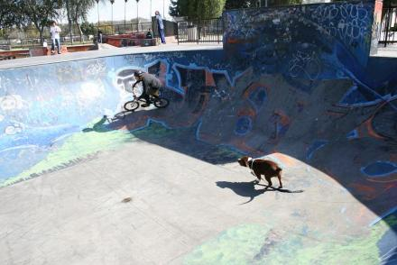 Long_Beach_skatepark_038.jpg