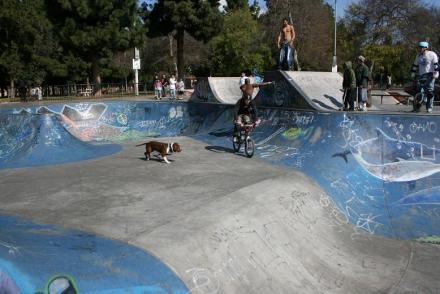 Long_Beach_skatepark_040.jpg