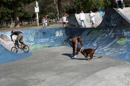 Long_Beach_skatepark_042.jpg