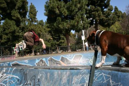 Long_Beach_skatepark_054.jpg