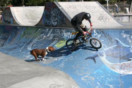 Long_Beach_skatepark_057.jpg