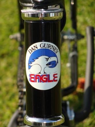 eagle4.JPG