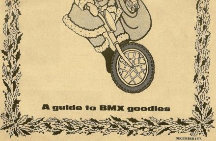 BMX News Xmas cat (1).jpg
