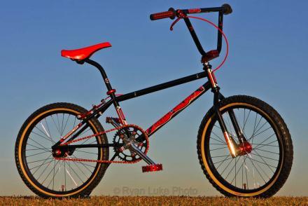 12-08-10 02Pat Bike 068nsm.jpg