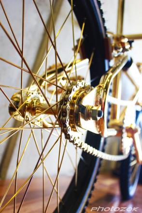 24ct_gold_bmx_detail_1_by_photozok-d5gq3tp.jpg